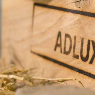 adlux_box_01